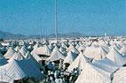 hajj_tents