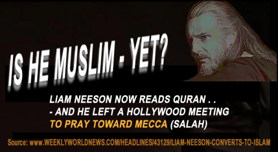 Liam_Neeson_newsroom_5